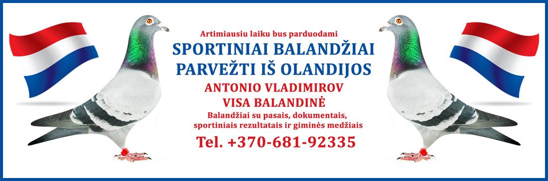 ANTONIO_balandziai