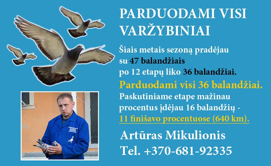 arturas_mikulionis_balandziai